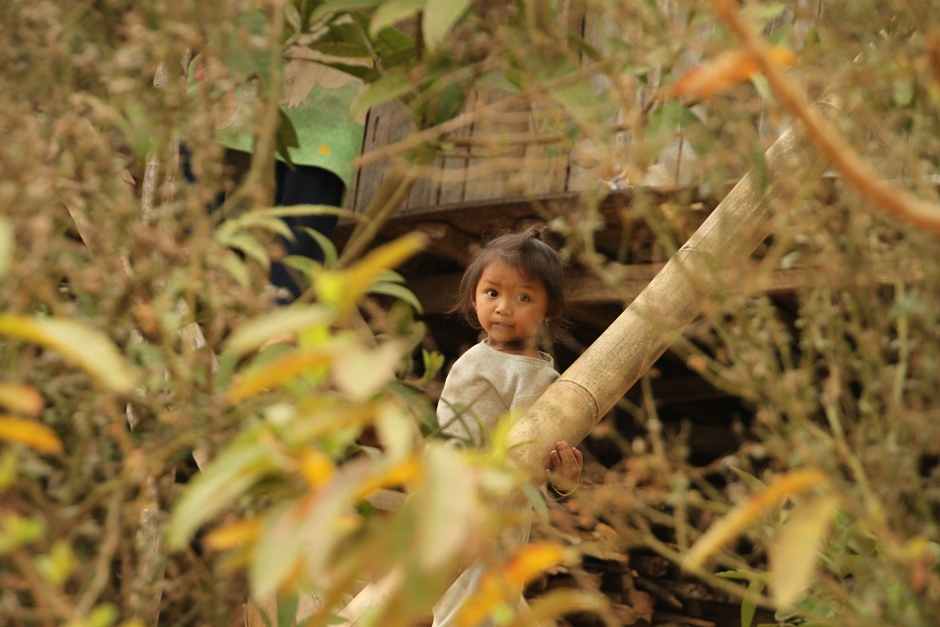 A little girl playing in the woods.
